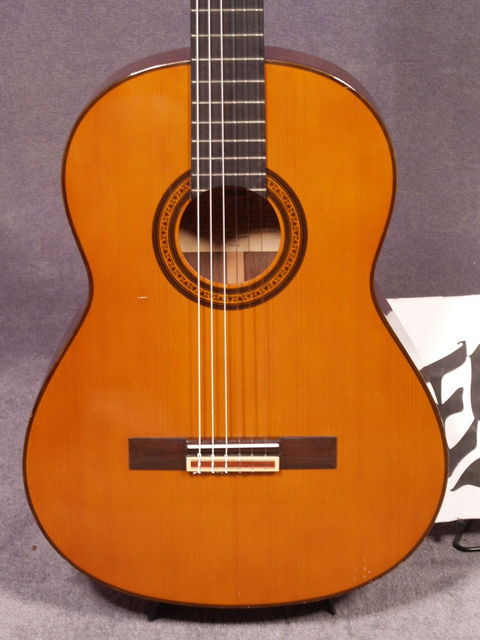 Yamaha g245 s wikizic for Yamaha cg150sa classical guitar